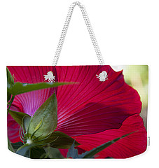 Weekender Tote Bag featuring the photograph Hibiscus by Charles Harden