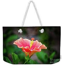 Hibiscus Rosa Sinensis Weekender Tote Bag by Michelle Meenawong