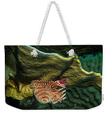 Weekender Tote Bag featuring the photograph Hidden Christmastree Worm by Jean Noren