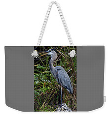 Weekender Tote Bag featuring the photograph Hidden In The Reeds by Richard Ortolano