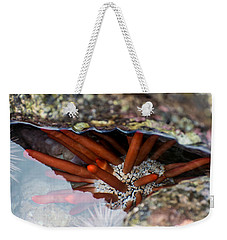 Weekender Tote Bag featuring the photograph Hidden Treasure by Colleen Coccia