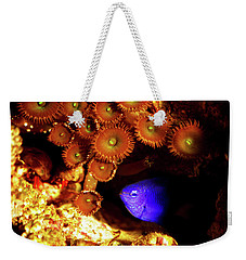 Weekender Tote Bag featuring the photograph Hiding Damsel by Anthony Jones