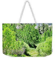 High Sierra Summer Weekender Tote Bag by Marilyn Diaz