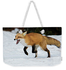 Weekender Tote Bag featuring the photograph High Speed Fox by Mircea Costina Photography