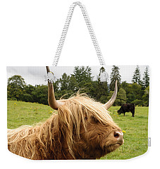 Weekender Tote Bag featuring the photograph Highland Coo by Christi Kraft