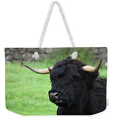 Weekender Tote Bag featuring the photograph Highland Coo by Mary-Lee Sanders