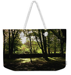 Weekender Tote Bag featuring the photograph Highland Forest by Mary-Lee Sanders