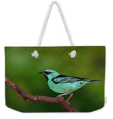Highlight Weekender Tote Bag by Tony Beck