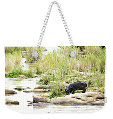 Hippo Drinking Out Of River Weekender Tote Bag
