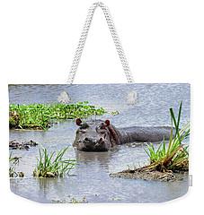 Hippo In The Serengeti Weekender Tote Bag