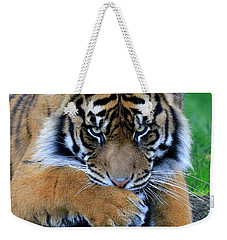 Hmmm Weekender Tote Bag by Steve McKinzie
