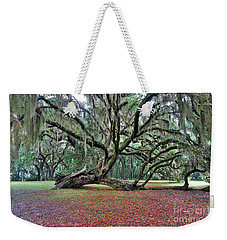 Hofwyl-broadfield Plantation2 Weekender Tote Bag