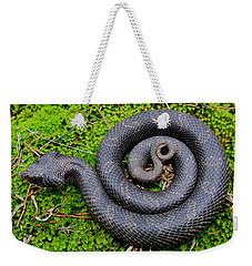 Hognose Spiral Weekender Tote Bag