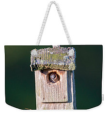 Home Weekender Tote Bag by Bill Wakeley