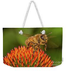 Honey Bee On Flower Two Weekender Tote Bag by Randy Steele