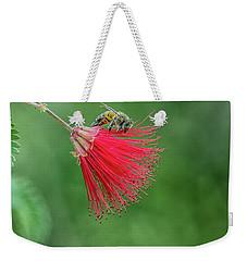 Honey Bee Weekender Tote Bag by Tam Ryan