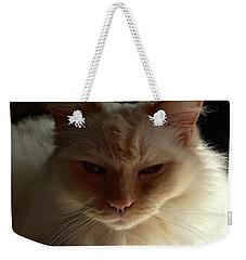 Honey, My Ragdoll Cat Weekender Tote Bag