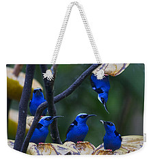 Honeycreeper Weekender Tote Bag by Betsy Knapp