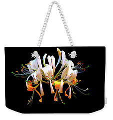 Weekender Tote Bag featuring the photograph Honeysuckle On Black by Nick Kloepping