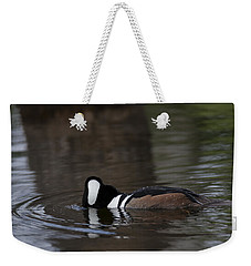 Hooded Merganser Preparing To Dive Weekender Tote Bag