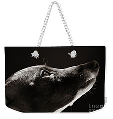 Weekender Tote Bag featuring the photograph Hopeful by Angela Rath