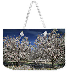Weekender Tote Bag featuring the photograph Hopes And Dreams by Laurie Search