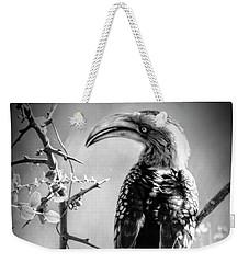 Hornbill Resting Weekender Tote Bag
