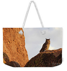 Horned Owl Perched At Sunset Weekender Tote Bag by Natalie Ortiz