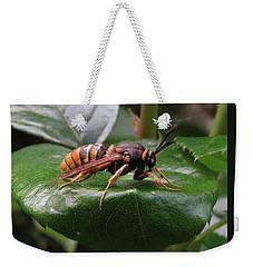 Hornet Moth 2 Weekender Tote Bag