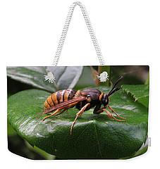 Hornet Moth Weekender Tote Bag by John Topman