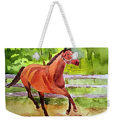 Horse #3 Weekender Tote Bag by Larry Hamilton