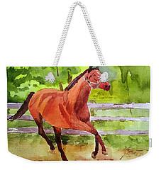Horse #3 Weekender Tote Bag