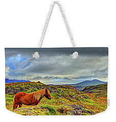 Weekender Tote Bag featuring the photograph Horse And Mountains by Scott Mahon