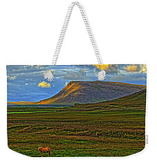 Weekender Tote Bag featuring the photograph Horse And Sky by Scott Mahon