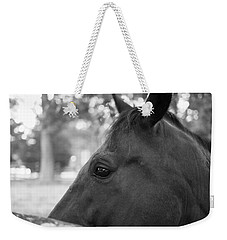 Horse At Fence Weekender Tote Bag