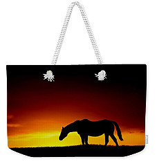 Horse At Sunset Weekender Tote Bag