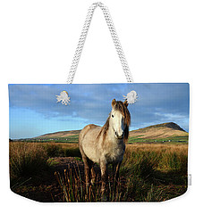 Horse Weekender Tote Bag by Barbara Walsh