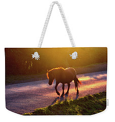 Horse Crossing The Road At Sunset Weekender Tote Bag