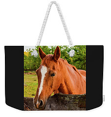 Horse Friends Weekender Tote Bag