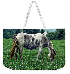 Horse Grazing In A Field Of Clover Weekender Tote Bag
