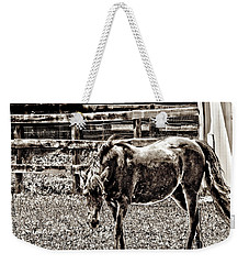 Horse In Black And White Weekender Tote Bag by Annie Zeno