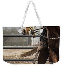 Horse In Hackamore Weekender Tote Bag