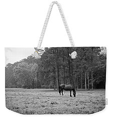 Horse In Pasture Weekender Tote Bag