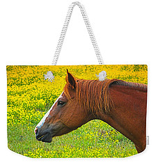Horse In Yellow Field Weekender Tote Bag by Wendy McKennon