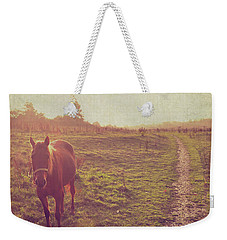 Weekender Tote Bag featuring the photograph Horse by Lyn Randle