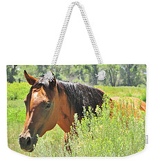 Horse Portrait Weekender Tote Bag by Marilyn Diaz
