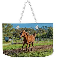 Horse Trot  Weekender Tote Bag