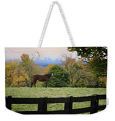 Horse With A View Weekender Tote Bag