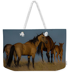 Horses 1 Weekender Tote Bag