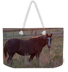 Horses 2 Weekender Tote Bag